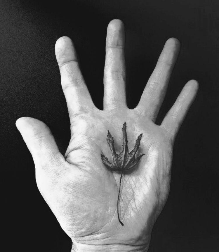 Leaf Hand - ellophotography, photography - rjayslais   ello