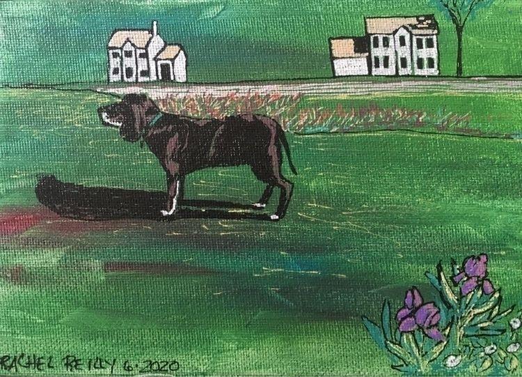 Bird Watcher - June 7, 2020 - dogs - rachelareilly | ello