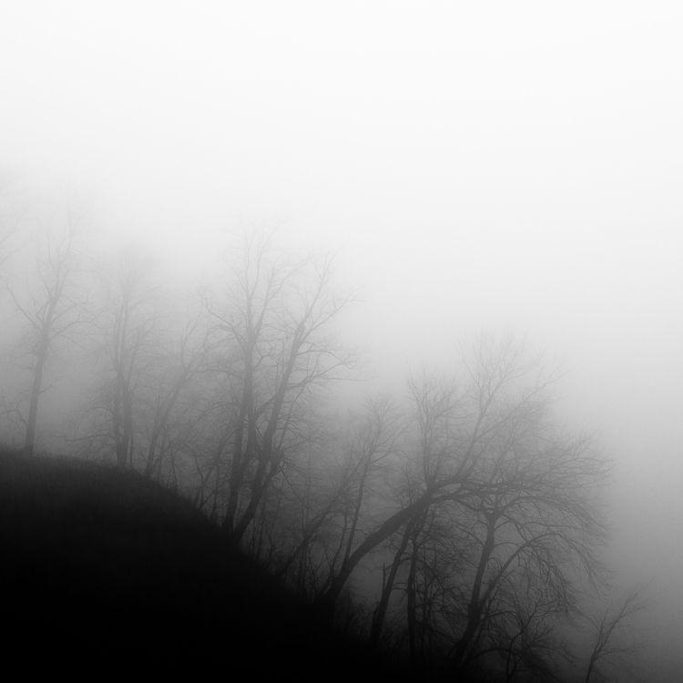 Lakeside Fog 060 - stopped soci - noahbw | ello