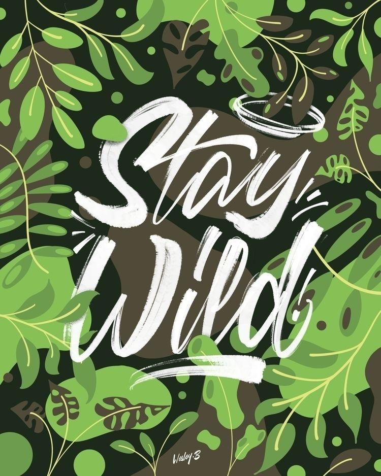 Stay Wild! Instagram Website - wesleybarnes_ | ello