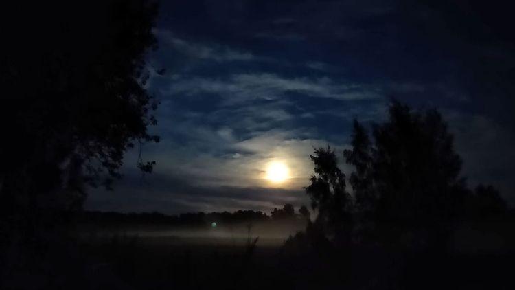 night dark full terrors.. face  - timoanttila | ello