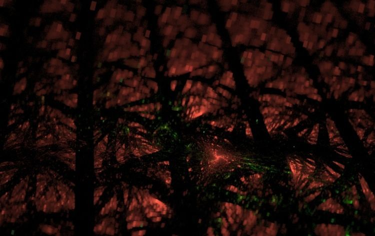 spirit trees - erisreg | ello