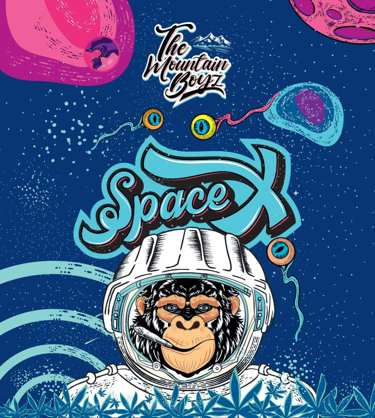 Space Packaging Illustration cr - think73   ello