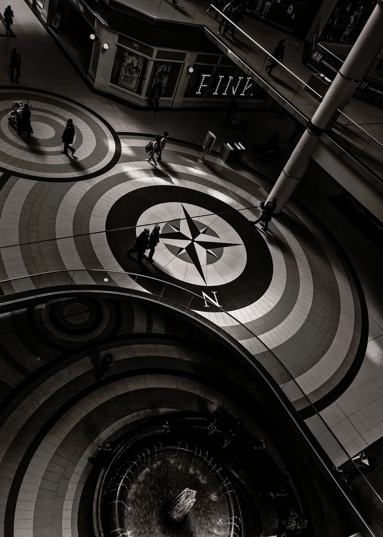 Compass 1. compass floor mural  - thelearningcurvephotography | ello