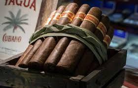 cigar rolled bundle dried ferme - azeemsohail | ello