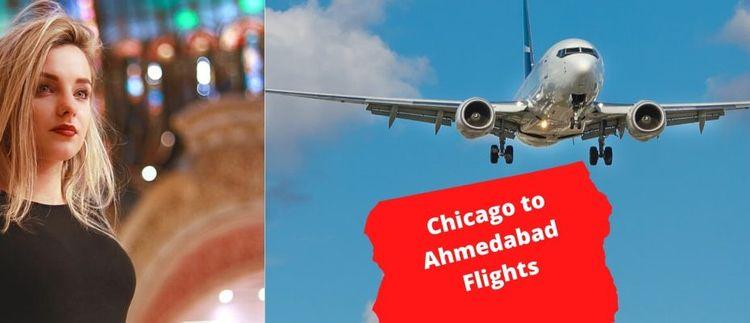 majority traveler flies, event - bigtravelhelpco | ello