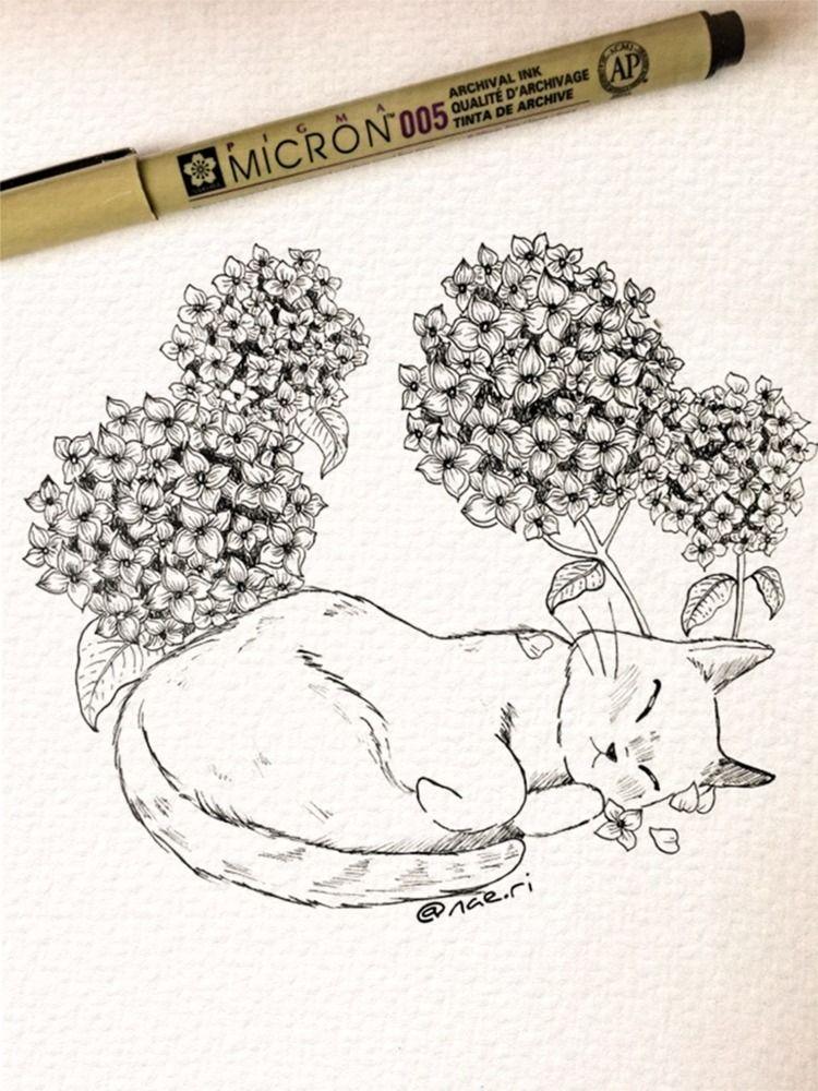 Sleeping cat hydrangeas - inkcat - naeri | ello