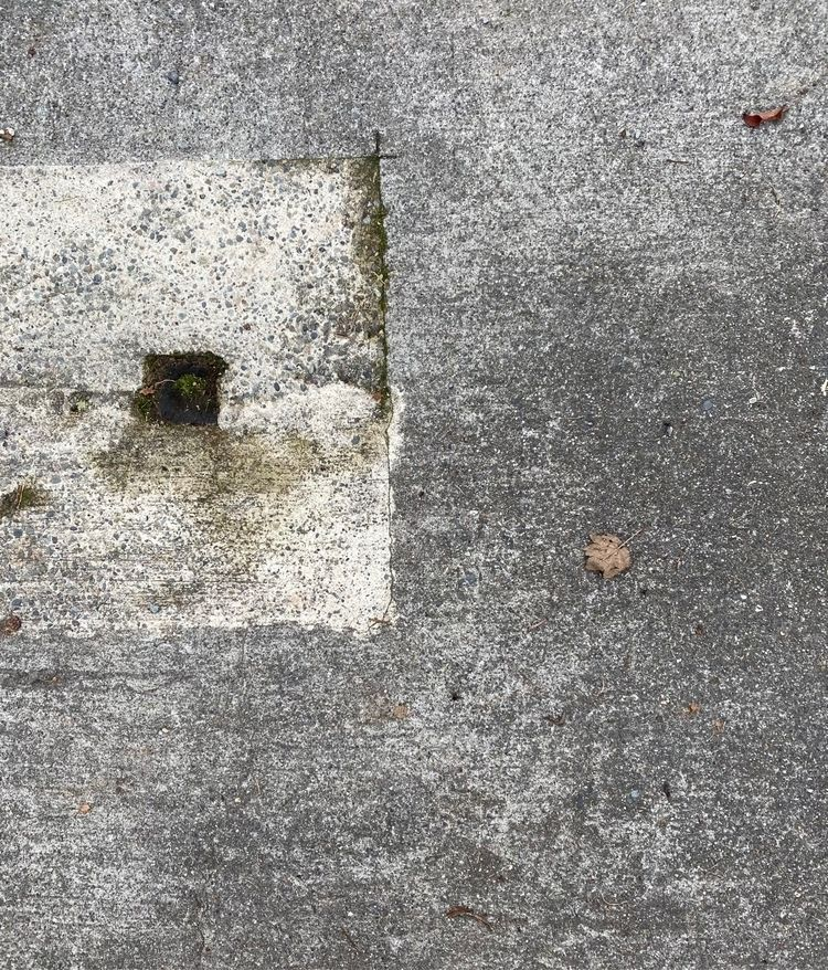 concretequilt - sdevans | ello
