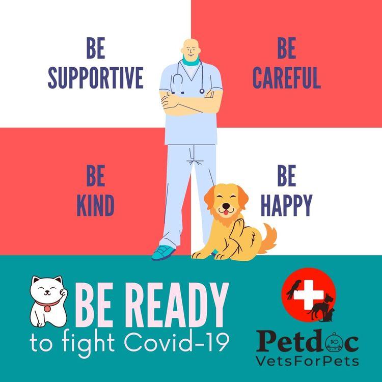 petdoc pet care service dogs sa - petdocvetsforpets | ello
