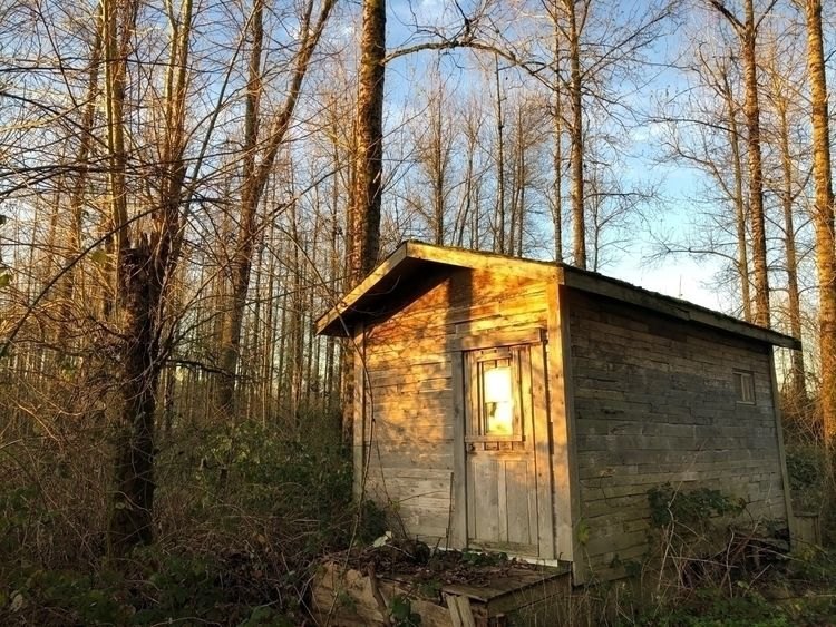 escape dreamed Thoreau cabin Ke - tonydurke   ello