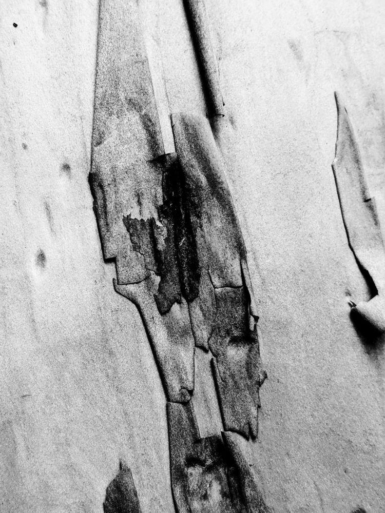 space breathe yesterday - BC, canada - mattsomervillephotography | ello