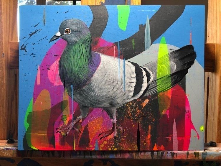 11x14 NYC Pigeon - gonzalesfrank   ello
