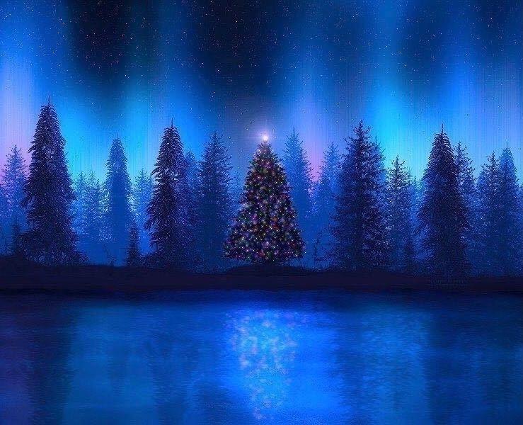 Merry Christmas, Happy Holidays - carolinaseth | ello