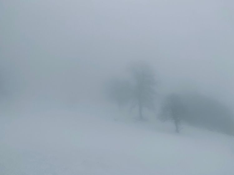 White Fog. Sunday, January 3, 2 - azerty   ello