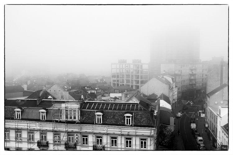 heavy fog - studio_zamenhof | ello