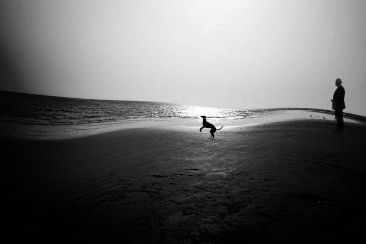 Beach - Summer,2003 - sea, seashore - sat1974 | ello