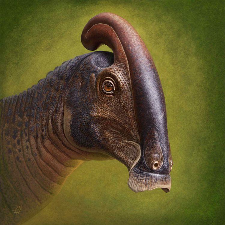 Skull dinosaur hollow tube head - bonniegrrl | ello
