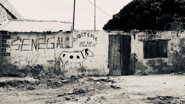 Meat shop, 2021. nearest butche - afropolitan | ello