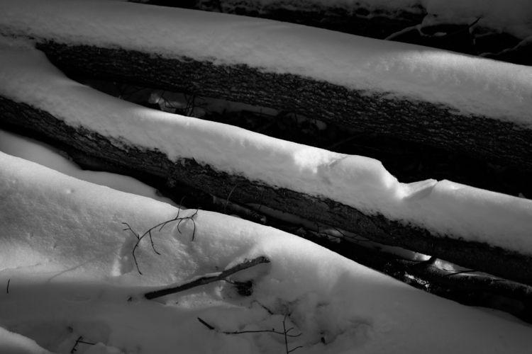 Silverado - photography, winter - marcushammerschmitt | ello