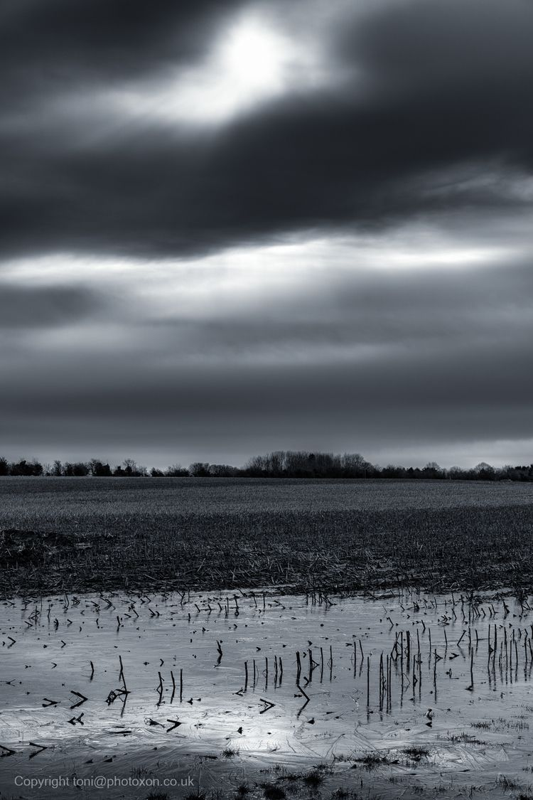 Cold reflection - toni_ertl | ello