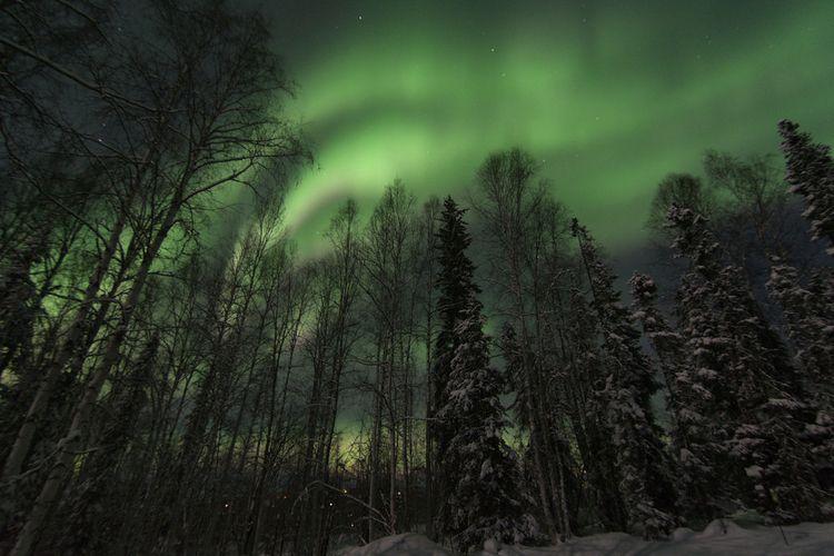 absolutely stunning aurora coup - lwpetersen | ello