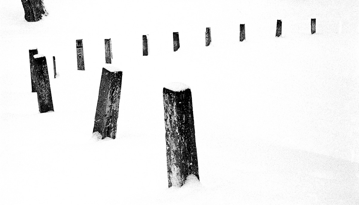 Veer Leicaflex Orwo N74 film - blackandwhitephotography - onnoweb | ello