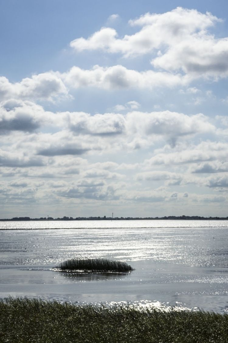 Clouds - nature, Elbe, island, light - brypalla | ello