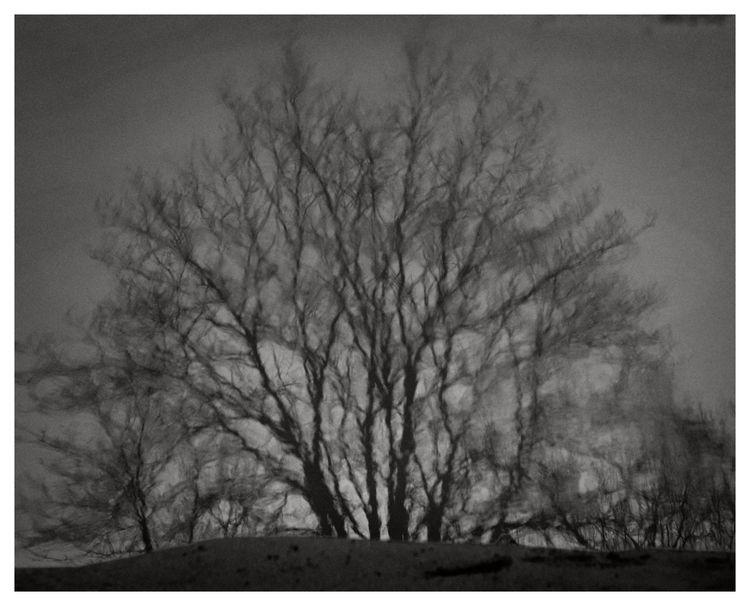 February 2021 - stockholm, fujifilm - lars_fotograf   ello