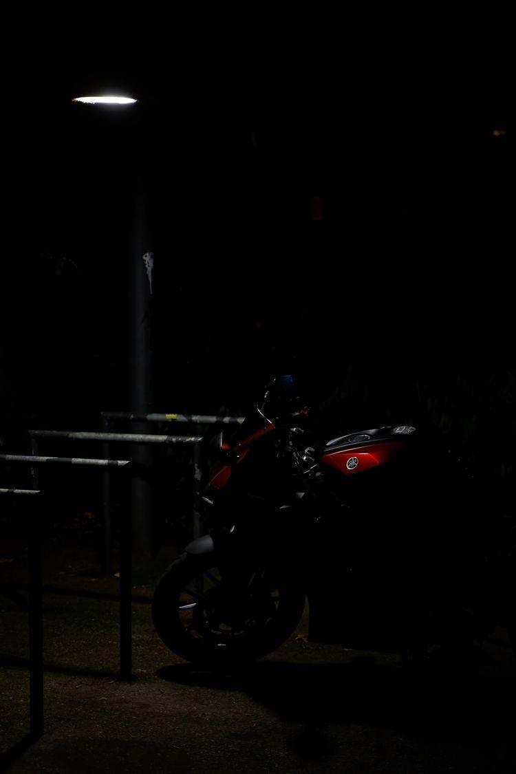 Hounds - photography, night, nighttime - marcushammerschmitt   ello