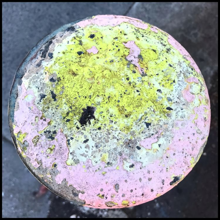 Pink yellow . 250121 - photography - matthewschiavello | ello