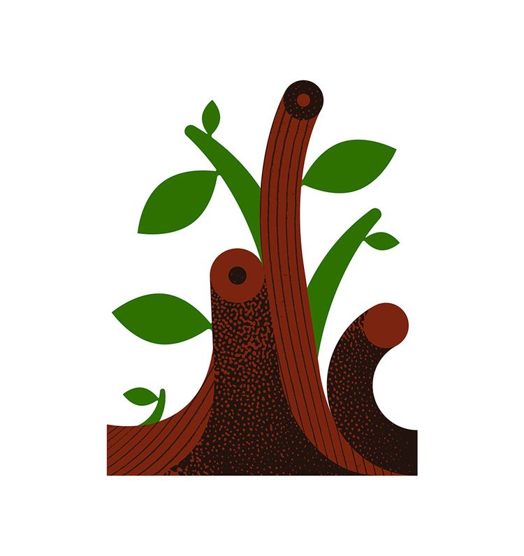 growth - illustration, spring, nature - alconic | ello