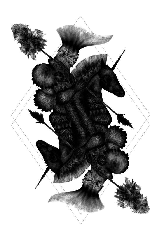 Grimoire: Hirundinidae launchin - francescozampieri | ello