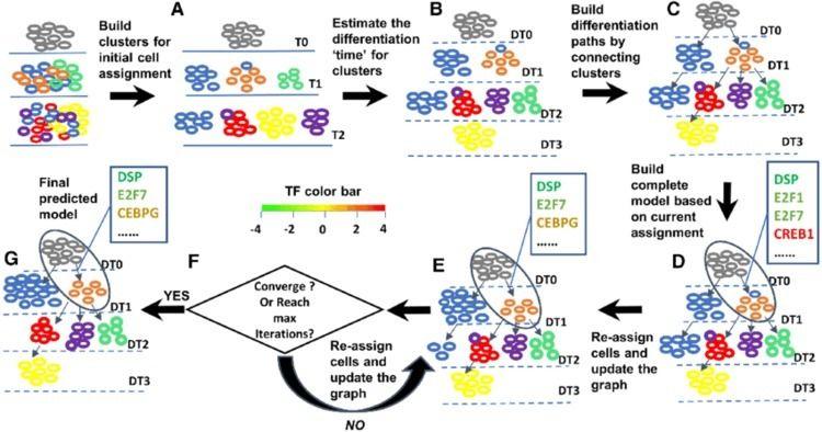 Single-cell RNA sequencing coll - anacytelab | ello