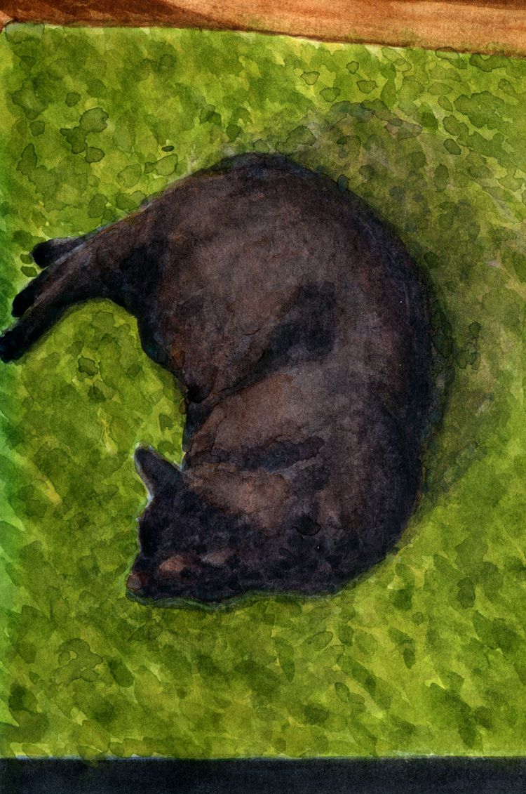 Portrait cat repose green shag  - geoffgossett   ello