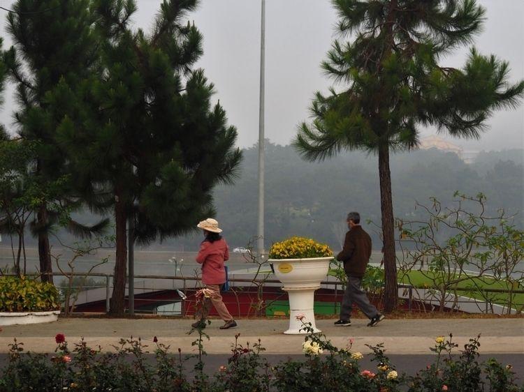 solo journey vietnam confined c - choyaplums   ello