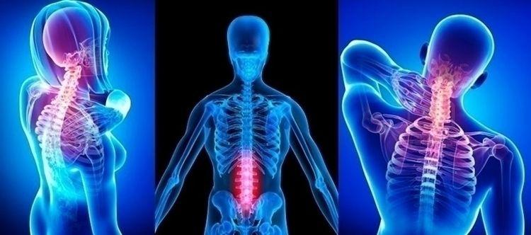 Chiropractic wellness method fo - functionalwellnesscenter | ello