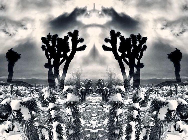 Moody Mojave - OnlyTogether - jrs1966 | ello