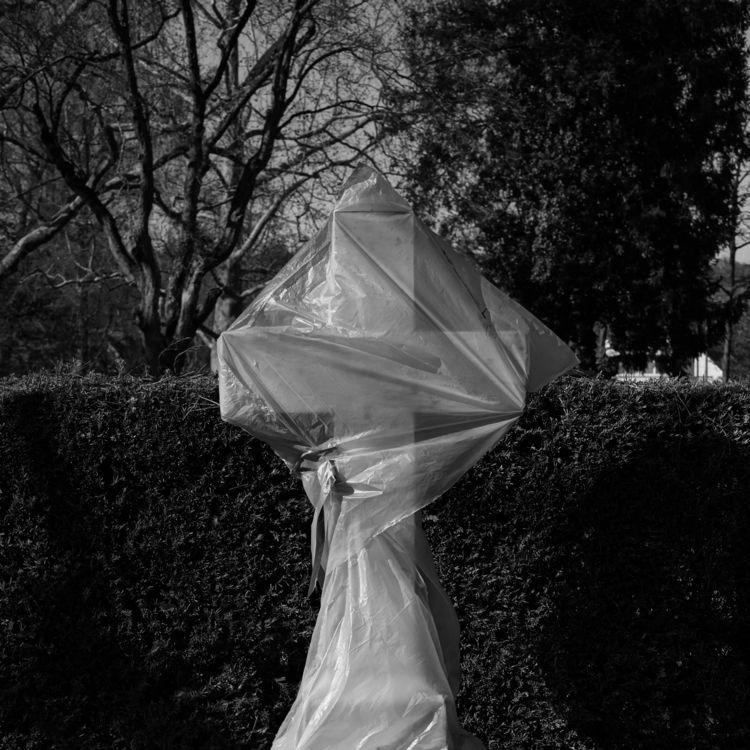 Membrane - photography, religion - marcushammerschmitt | ello