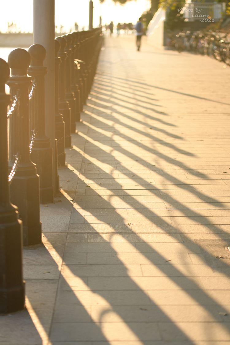 light shadow - nikonD850, photography - laam | ello