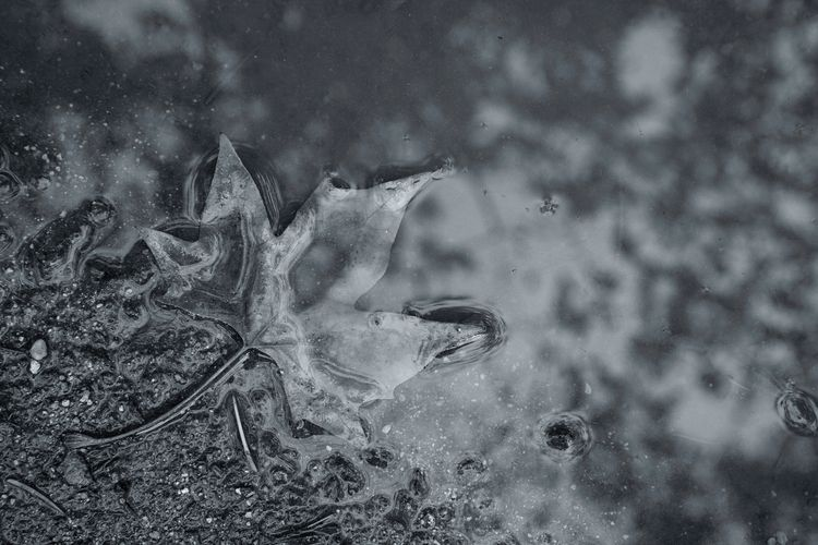tearful day - innerscape, sadness - anagilbert   ello