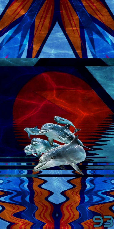 MEGASONIC DOLPHINS PINK TULIP 1 - novaexpress93 | ello