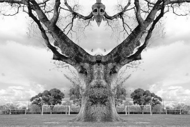 red oak stag branch buddy....@h - zygzwurx | ello
