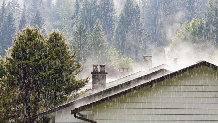Importance Roof Cleaning Heavy  - arronspressurewashing   ello