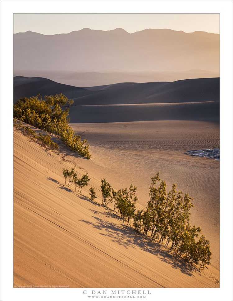 Morning Haze, Dunes Mountains.  - gdanmitchell   ello