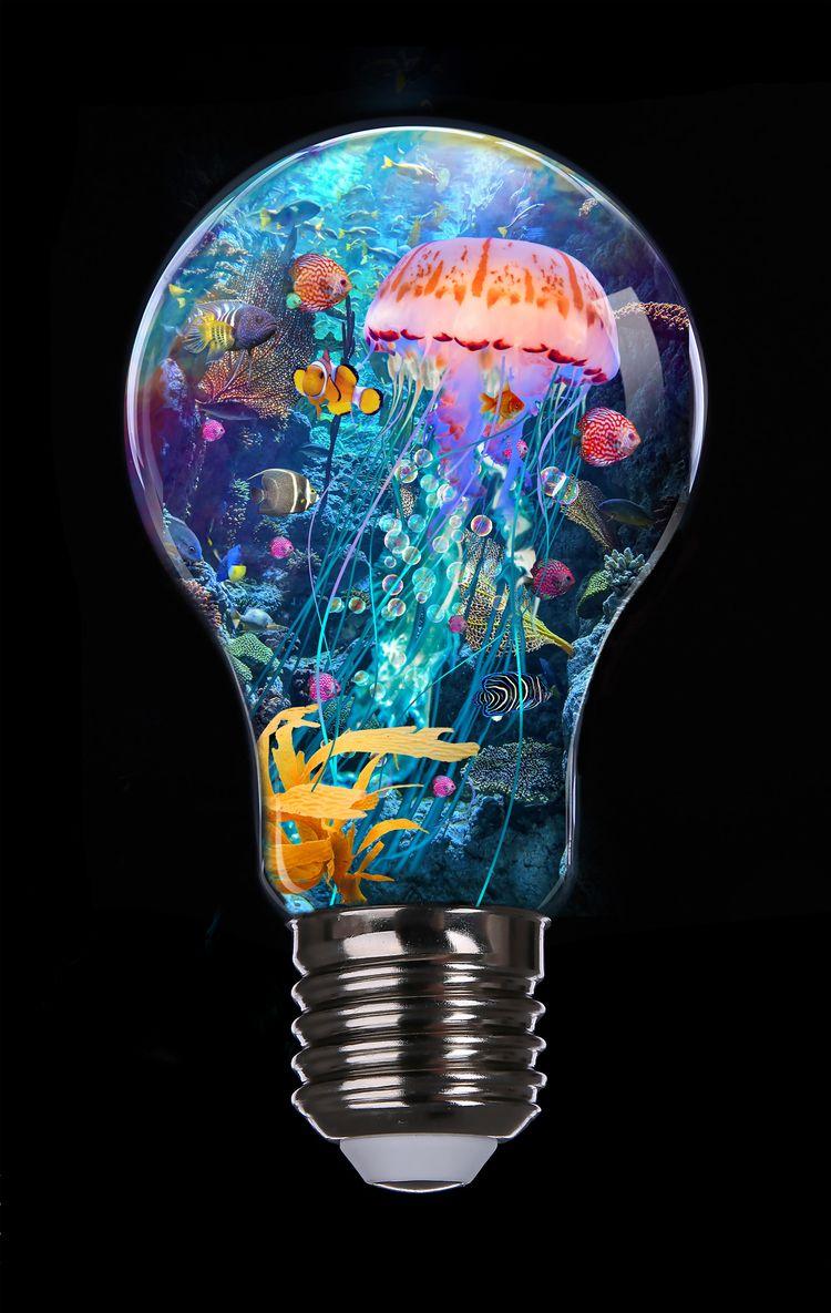 image Jellyfish Garden Light-bu - lobber66 | ello