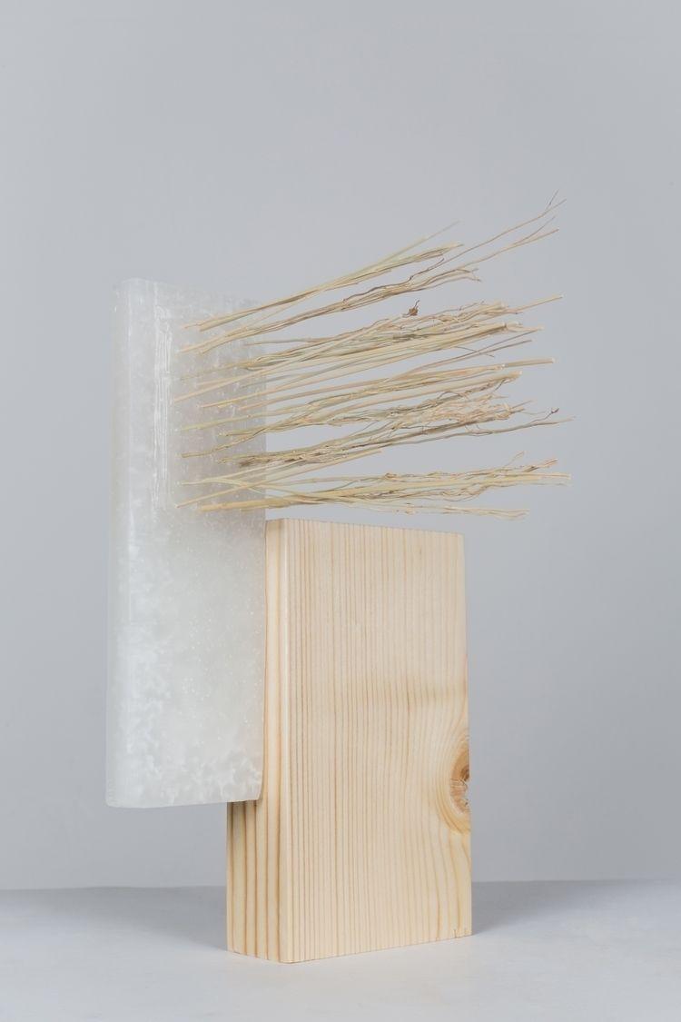 Study Relations Sculpture 1 Sor - tischlarov | ello