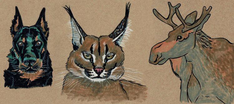 Animal studies 2021 - animals, nature - aotar-le-quaint | ello