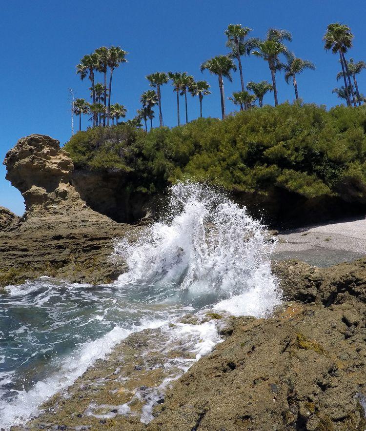 World Oceans Day couple weeks C - jeffkratsch   ello