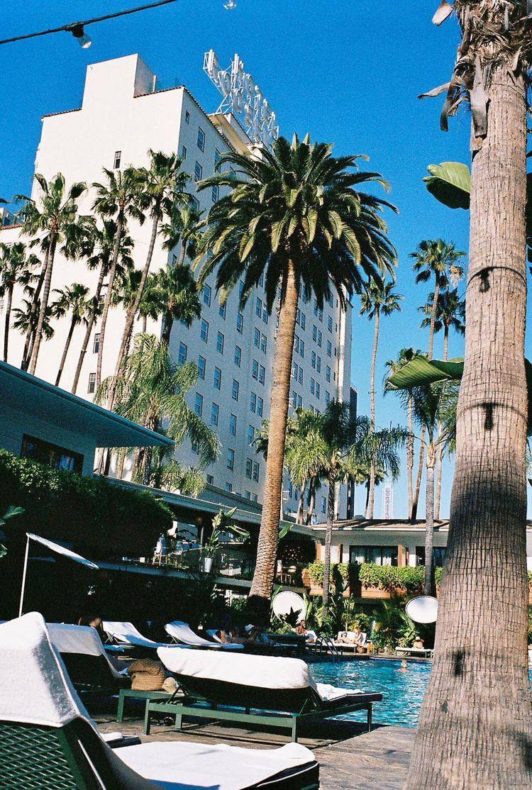 Hollywood Roosevelt | April 202 - street_spirit | ello