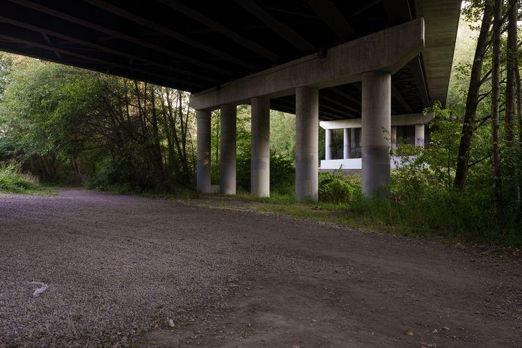 Jim Roche, Landscape Documentar - jimroche1   ello